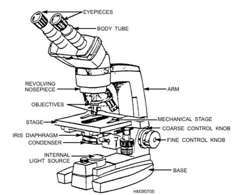 binocular parts diagram light microscopy clipart labeled function pencil and in