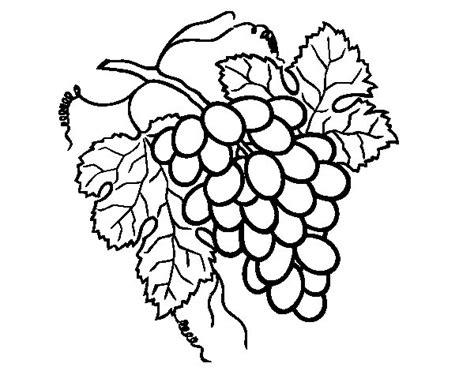 imagenes de unas uvas para dibujar dibujo de racimo de uvas para colorear dibujos net