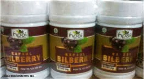 Bilberry Hpai Herbal Kesehatan Mata cara merawat mata agar sehat moment glucogen plus agen resmi jual moment glucogen indonesia