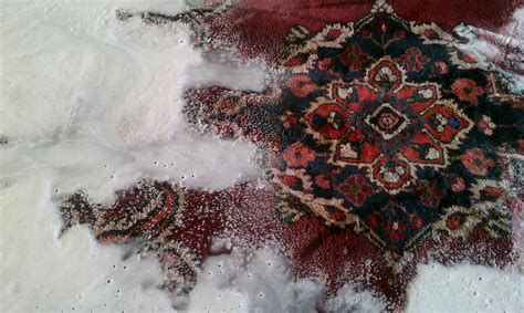 Rugs Boise by Rug In Process Ultimate Carpet Cleaning Boise