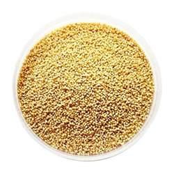 foxtail millet seeds 1kg desertcart