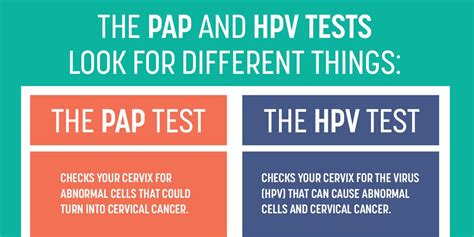 hpv test hpv test a novel technique to prevent cervical cancer