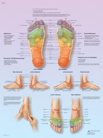 foot reflex zone massage anatomical chart anatomy