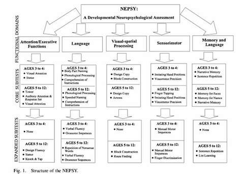 nepsy ii sle report nepsy related keywords nepsy keywords keywordsking