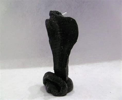 imagenes lombrices negras m 225 s de 25 ideas incre 237 bles sobre serpiente cobra en