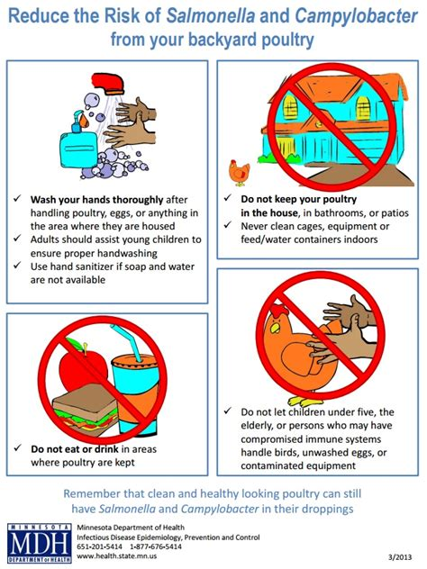 how to keep chickens in your backyard how to keep chickens in your backyard favorite things