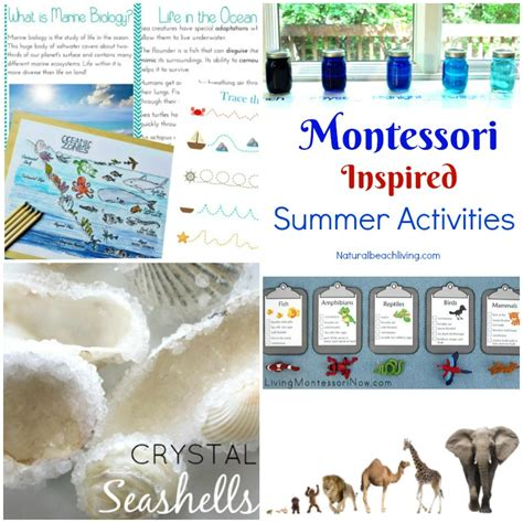kindergarten themes for june 12 montessori june preschool themes perfect for summer