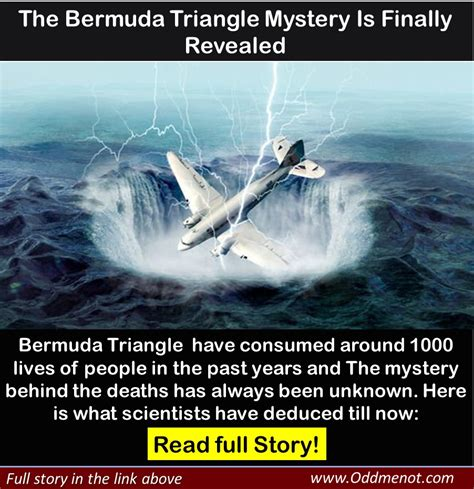 the mystery of bermuda triangle is solved now revoseek has the mystery of the bermuda triangle finally been