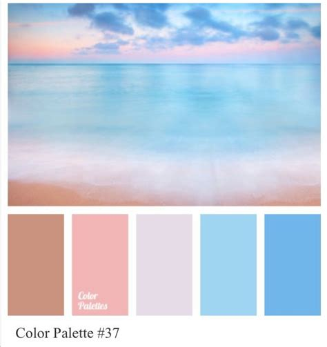 colour palette cool pinks  blues family photo