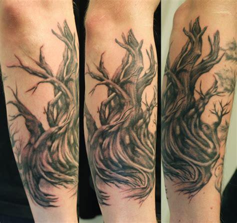 bristlecone pine by paintedpeople on deviantart