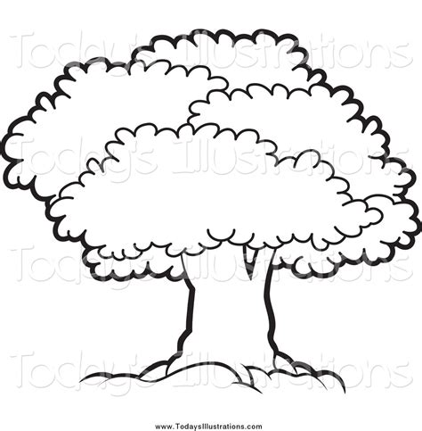narra tree coloring page narra tree clipart black and white clipartxtras