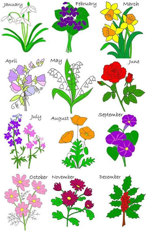 birth flowers birth stones flowers pinterest kid