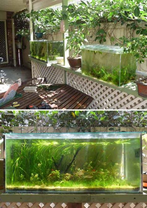 22 small garden or backyard aquarium ideas will blow your mind amazing diy interior amp home design