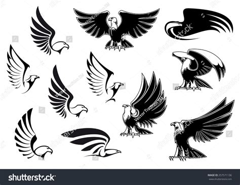 eagle silhouettes showing flying standing birds stock