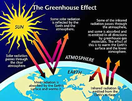 climate change could cause humans to shrink in size climate change will effect economy global warming could