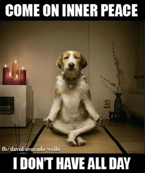Inner Peace Meme - come on inner peace i don t have all day projects to