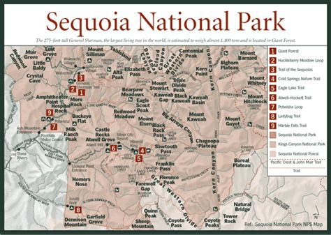 california map sequoia national park sequoia national park map general sherman tree location