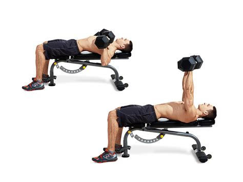dumbbell bench press exercise dumbbell bench press men s fitness
