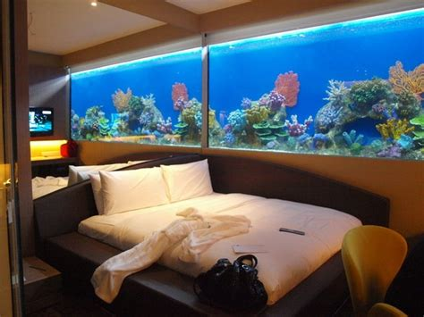 fishing bedroom 106 best images about tanked aquariums on pinterest cool