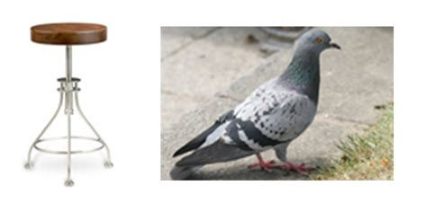 The Stool Pigeon by Contextual Symbolism The Artists Code