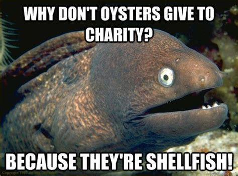 Eel Meme - funny eel memes 12 pics izismile com