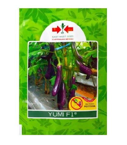Benih Terong Ungu Unggul benih panah merah terong ungu yumi f1 400 biji jual