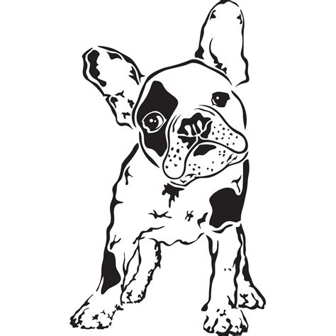 boston terrier coloring page 28 images boston terrier