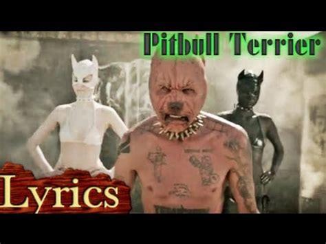 free pitbull puppies nj pitbull terrier lyrics die antwoord lyric lyrics