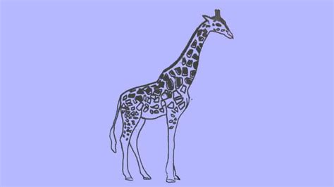 pattern giraffe drawing giraffe outline drawing
