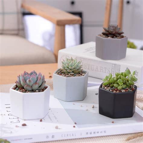 aliexpress com buy small potted bonsai mini succulent aliexpress com buy 4pcs set matt decorative hexagon