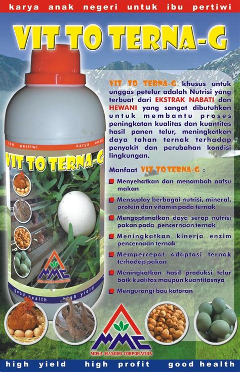 Bibit Ayam Petelur Di Jawa Timur cara ternak kambing ternak ayam petelur pdf
