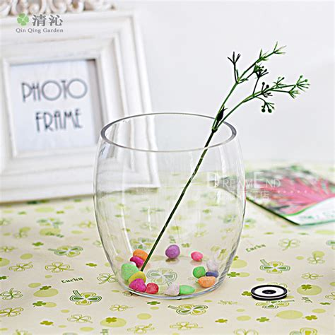 Bamboo In Water Vase by Hydroponic Flowers Plants Transparent Glass Vase Water To