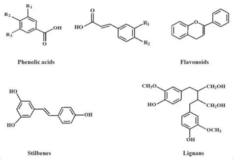 polifenoli alimenti polifenoli chimicamo org