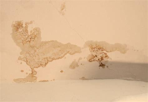 nasse flecken an der wand nasse w 228 nde in wohn und kellerr 228 umen