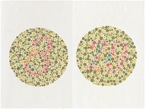 define color blindness oculus ishihara tests from oculus inc product