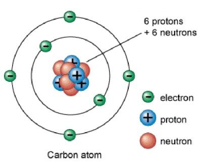Protons And Nuetrons What Makes An Oxygen Atom Different From A Carbon Atom A