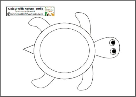 colour with nature free turtle template printable plus