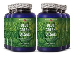 Blue Green Algae Liver Detox by Weight Loss Stack Weight Loss System Best And 50