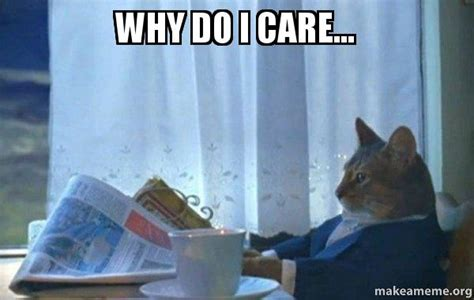 Do I Care Meme - why do i care sophisticated cat make a meme