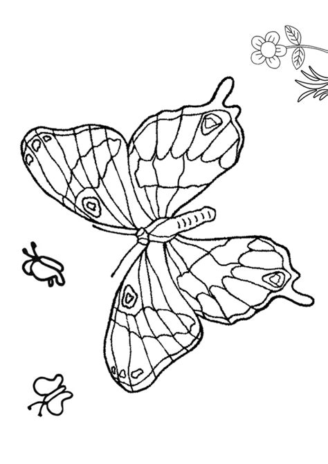 beautiful coloring pages of butterflies free coloring pages of beautiful butterfly