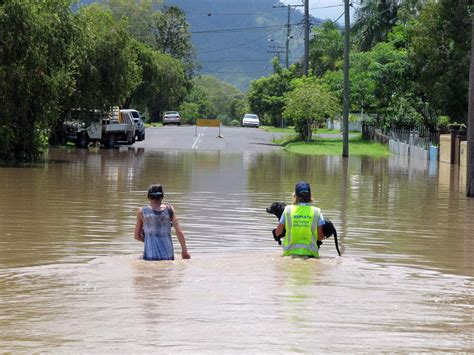 public boat r north brisbane floods prompt call for pet evacuation laws abc north qld