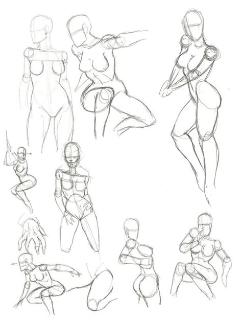Drawing Anatomy by Anatomy Drawing Human Anatomy Diagram