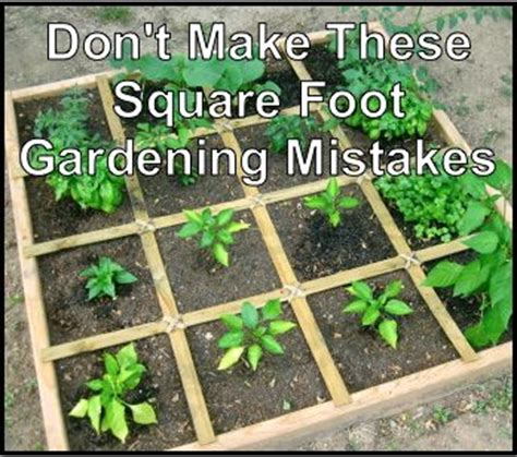 square foot gardening ideas 25 best ideas about square foot gardening on