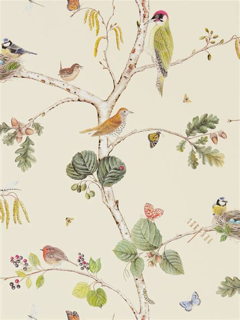 bird wallpaper for walls 25 best ideas about bird wallpaper on pinterest powder rooms with chinoiserie inspired