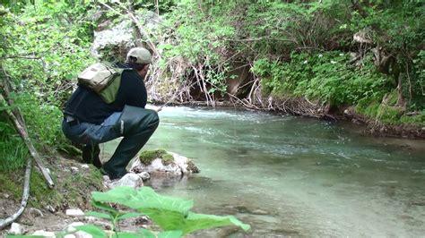 ufficio turistico molveno 187 pesca agritur la cort arco le tua vacanze sul lago