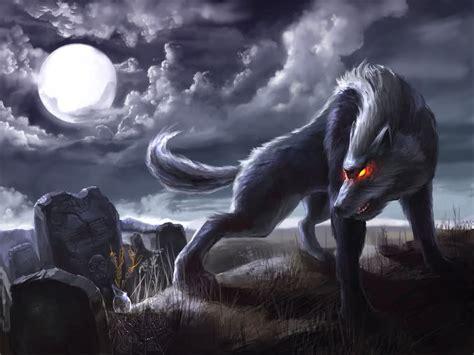 fondos de pantalla de lobos en movimiento fondos de pantalla fondos de pantalla animados de lobos fondos de pantalla