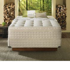 Aireloom Mattress The Dump by 1000 Images About Mattresses On