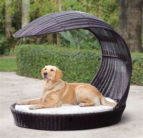 Luxury Outdoor Canine Furniture Dog Lounge Outdoor Furniture For Dogs