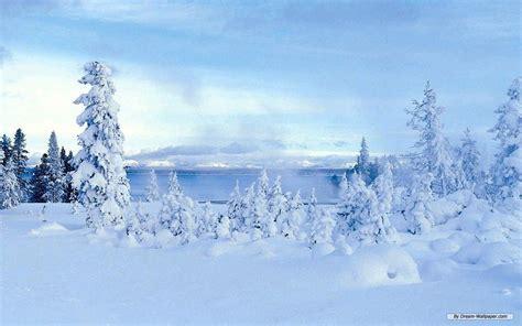 wallpaper desktop winter wonderland winter wonderland backgrounds wallpaper cave