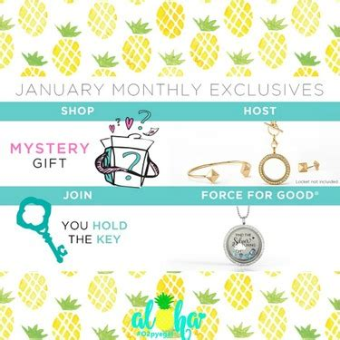 Origami Owl Store Locator - january origami owl exclusives shop host join